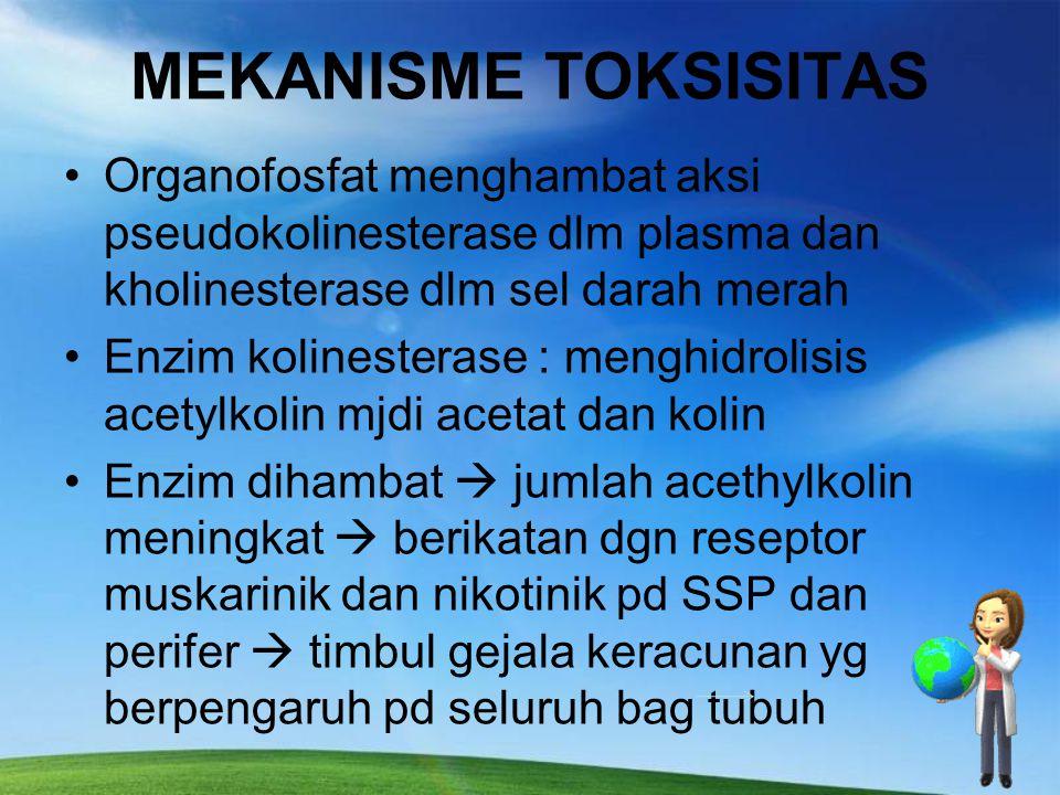 MEKANISME TOKSISITAS Organofosfat menghambat aksi pseudokolinesterase dlm plasma dan kholinesterase dlm sel darah merah.