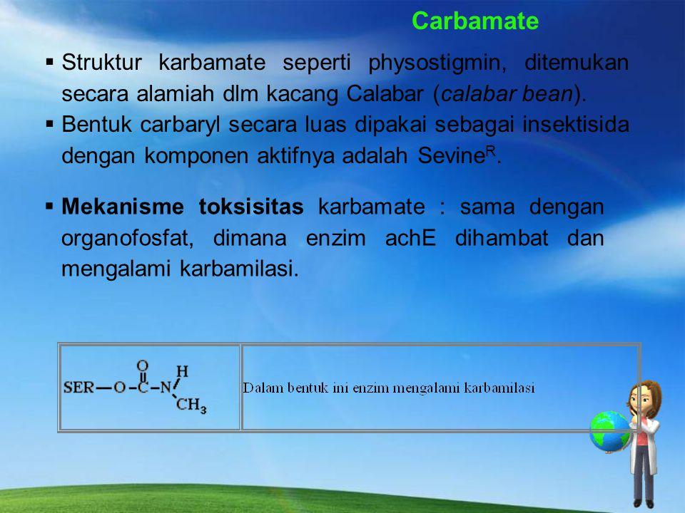 Carbamate Struktur karbamate seperti physostigmin, ditemukan secara alamiah dlm kacang Calabar (calabar bean).