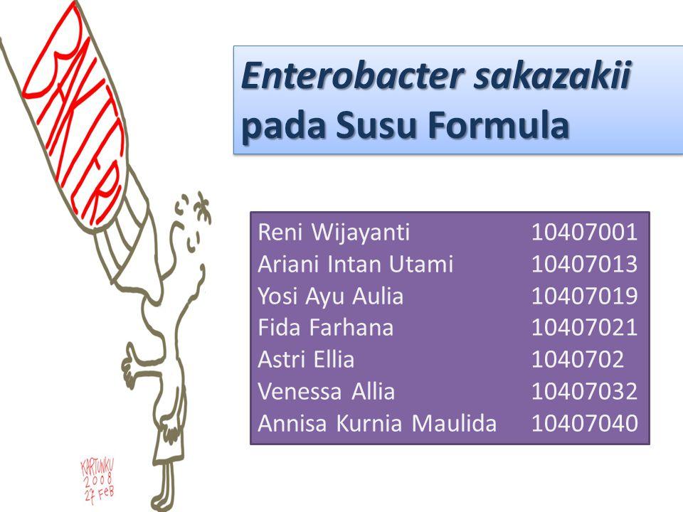 Enterobacter sakazakii pada Susu Formula