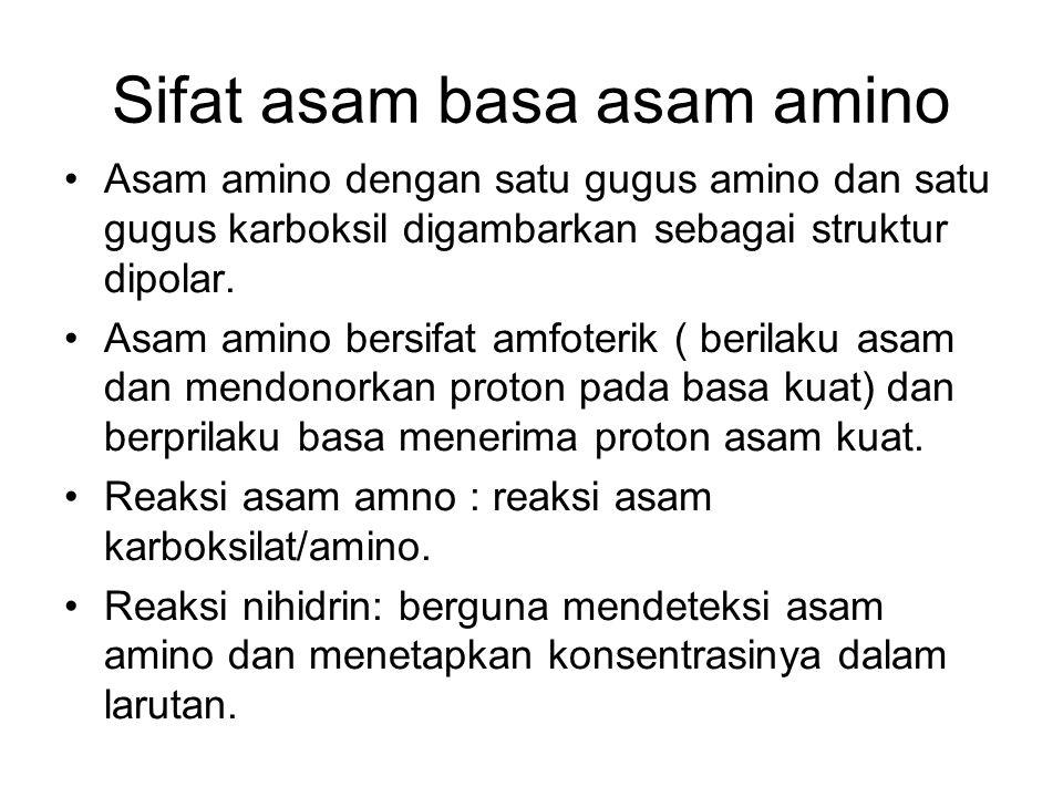 Sifat asam basa asam amino