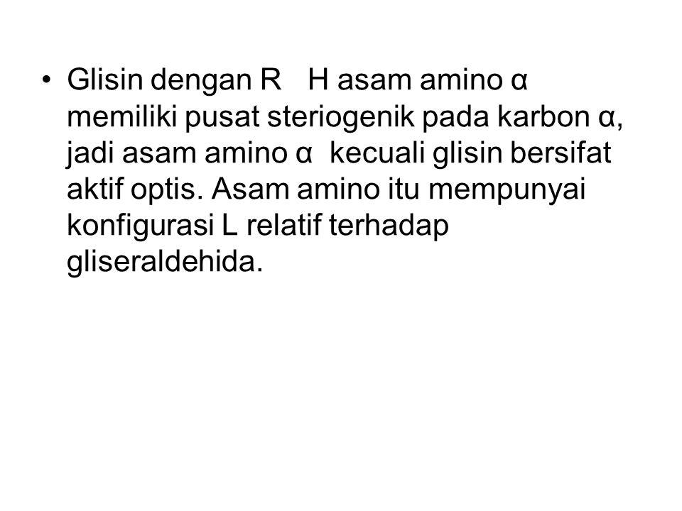 Glisin dengan R H asam amino α memiliki pusat steriogenik pada karbon α, jadi asam amino α kecuali glisin bersifat aktif optis.