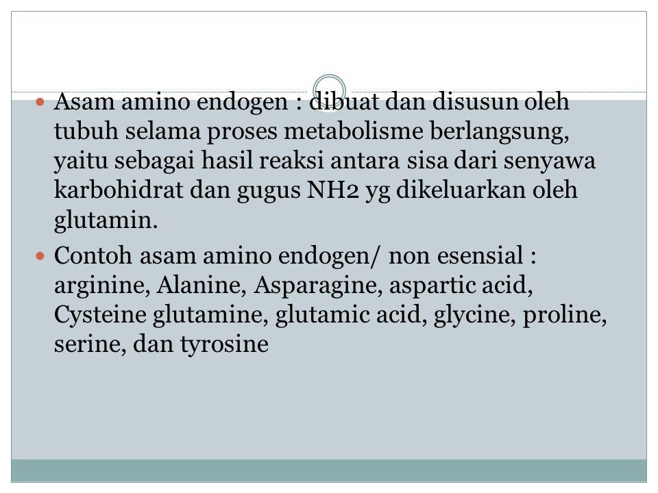 Asam amino endogen : dibuat dan disusun oleh tubuh selama proses metabolisme berlangsung, yaitu sebagai hasil reaksi antara sisa dari senyawa karbohidrat dan gugus NH2 yg dikeluarkan oleh glutamin.