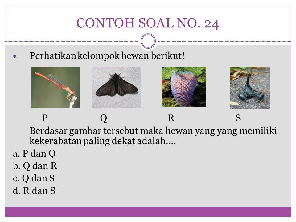 CONTOH SOAL NO. 24 Perhatikan kelompok hewan berikut! P Q R S