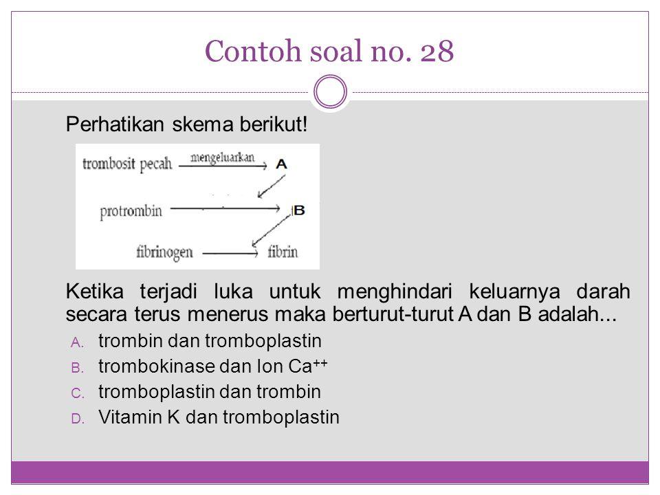 Contoh soal no. 28 Perhatikan skema berikut!