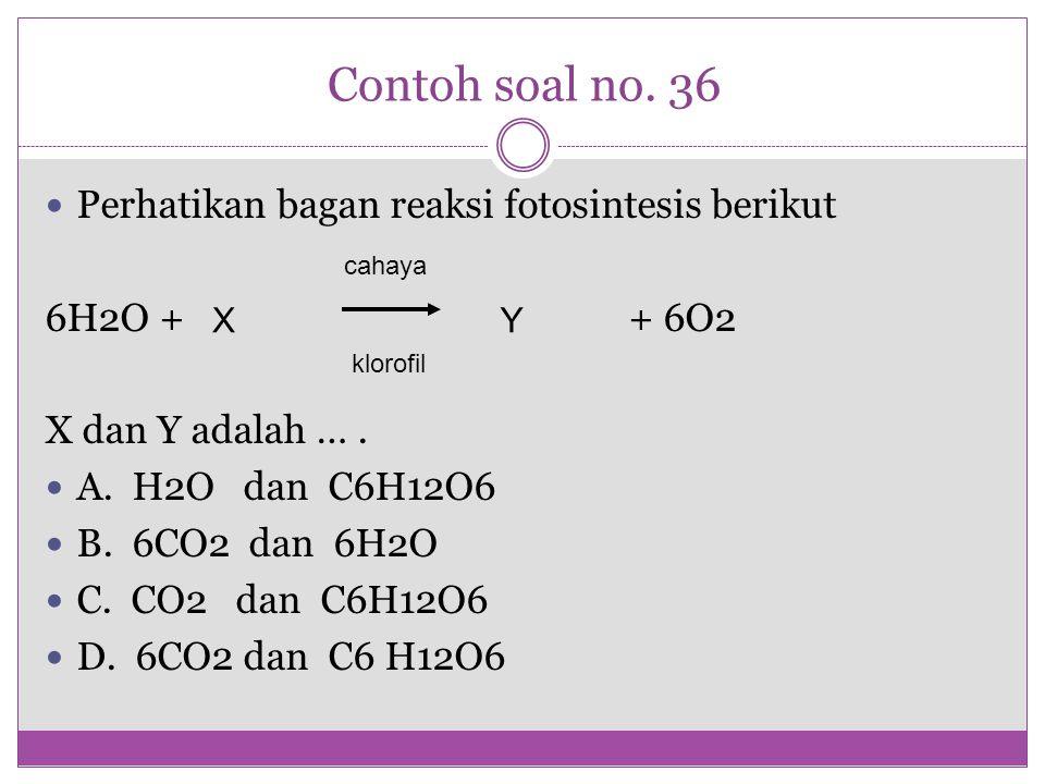 Contoh soal no. 36 Perhatikan bagan reaksi fotosintesis berikut