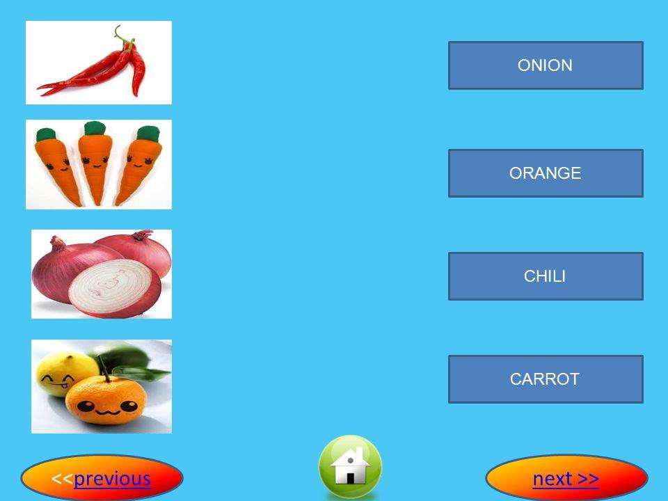 ONION ORANGE CHILI CARROT <<previous next >>
