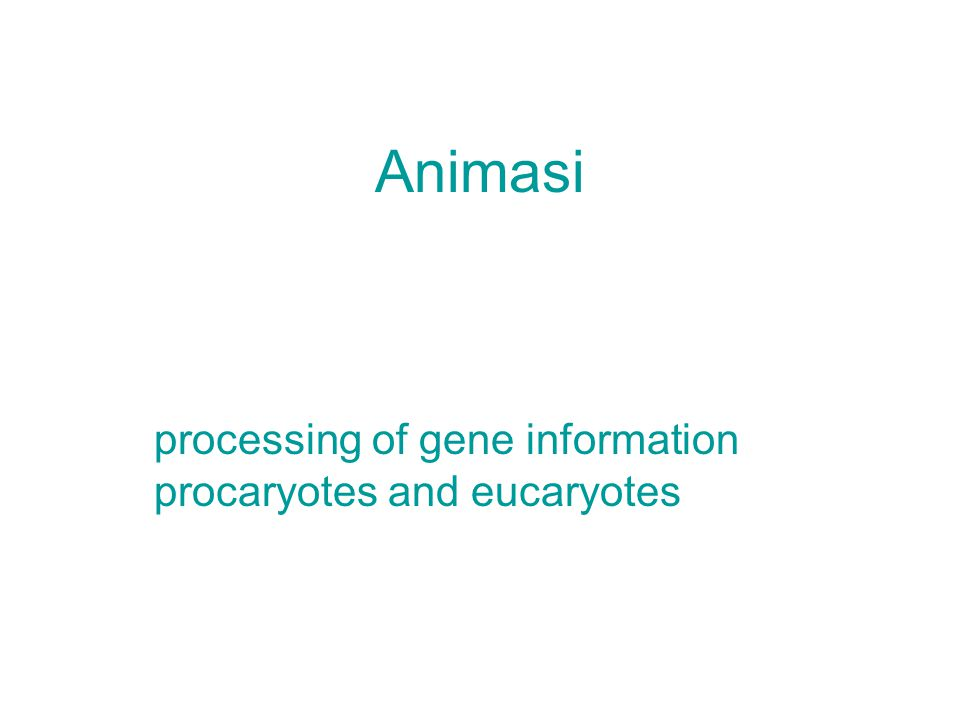 processing of gene information procaryotes and eucaryotes