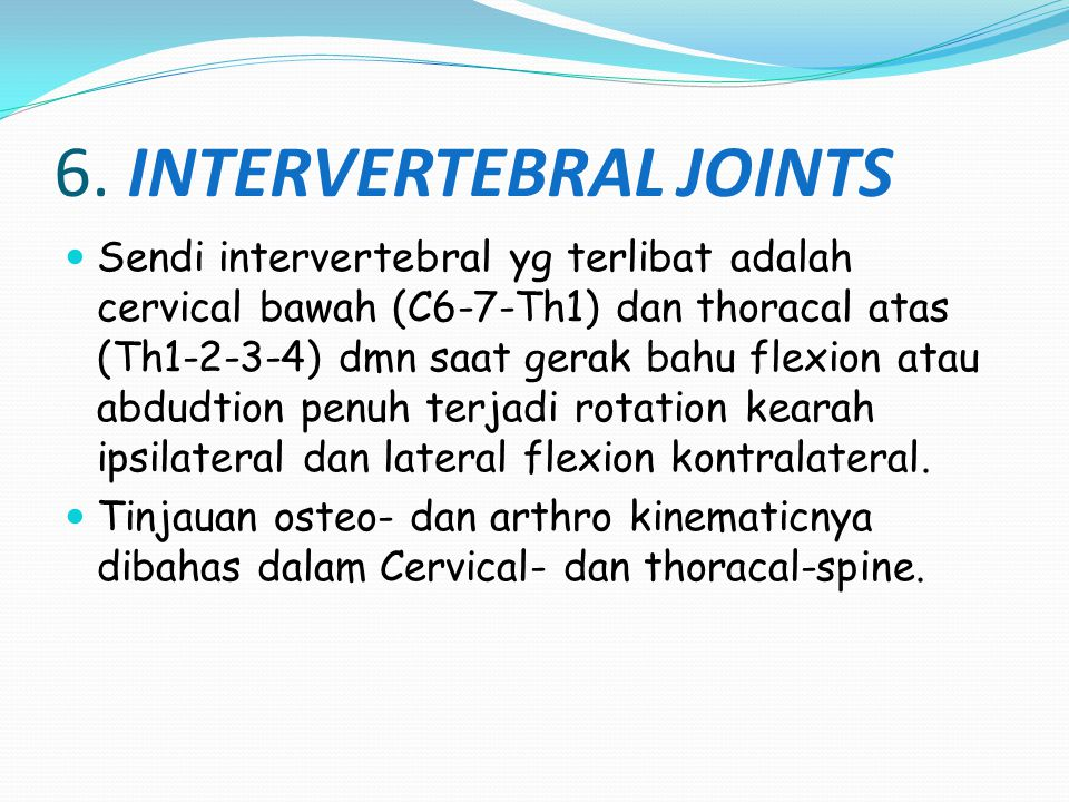 6. INTERVERTEBRAL JOINTS