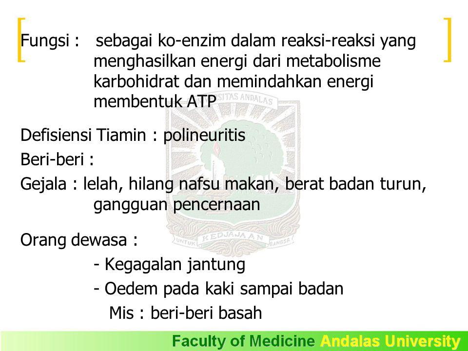 Fungsi : sebagai ko-enzim dalam reaksi-reaksi yang menghasilkan energi dari metabolisme karbohidrat dan memindahkan energi membentuk ATP
