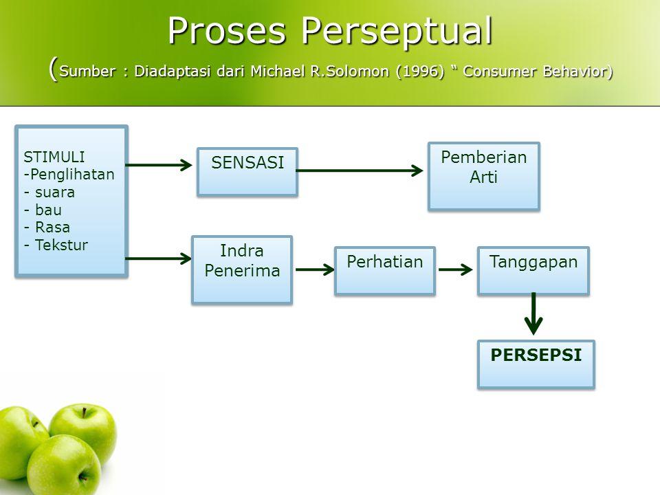 Proses Perseptual (Sumber : Diadaptasi dari Michael R