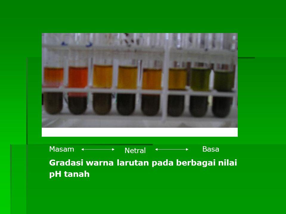 Gradasi warna larutan pada berbagai nilai pH tanah