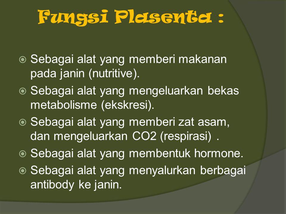 Fungsi Plasenta : Sebagai alat yang memberi makanan pada janin (nutritive). Sebagai alat yang mengeluarkan bekas metabolisme (ekskresi).