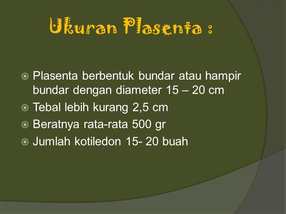 Ukuran Plasenta : Plasenta berbentuk bundar atau hampir bundar dengan diameter 15 – 20 cm. Tebal lebih kurang 2,5 cm.