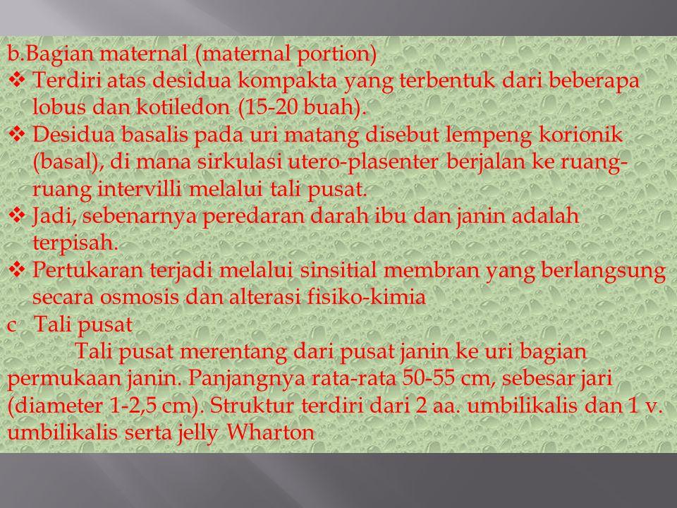 b.Bagian maternal (maternal portion)