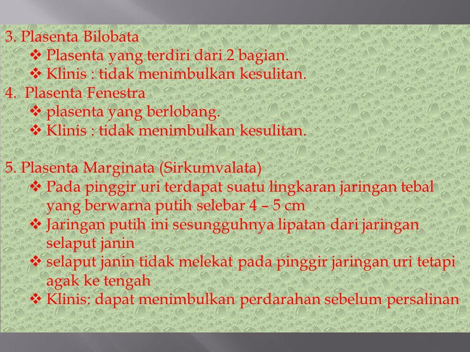 3. Plasenta Bilobata Plasenta yang terdiri dari 2 bagian. Klinis : tidak menimbulkan kesulitan. 4. Plasenta Fenestra.