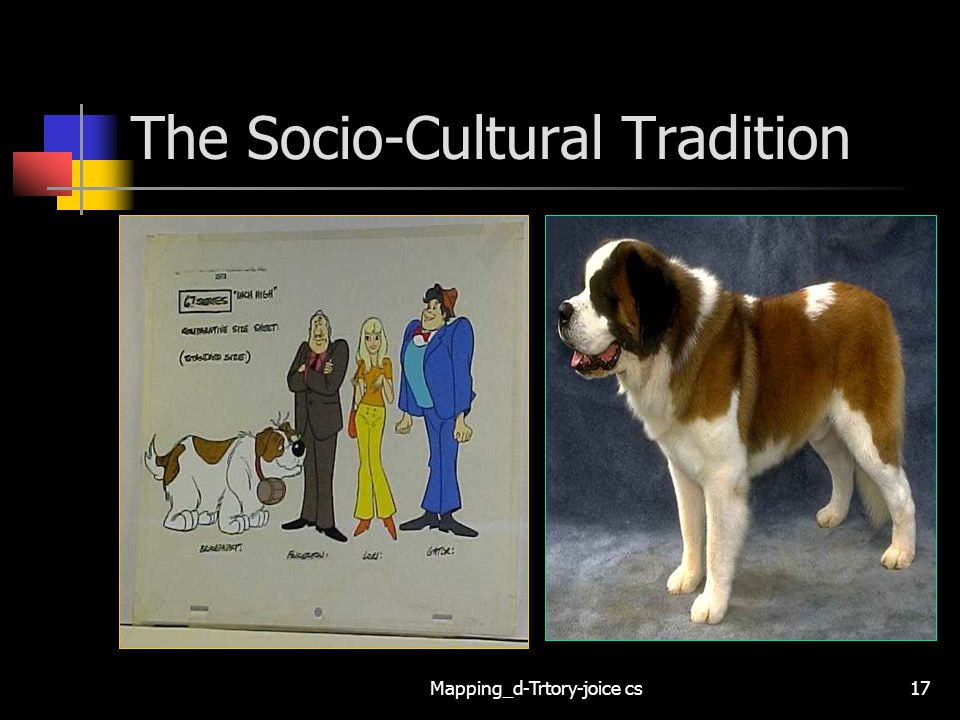 The Socio-Cultural Tradition