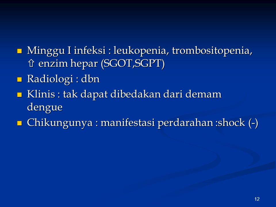 Minggu I infeksi : leukopenia, trombositopenia,  enzim hepar (SGOT,SGPT)