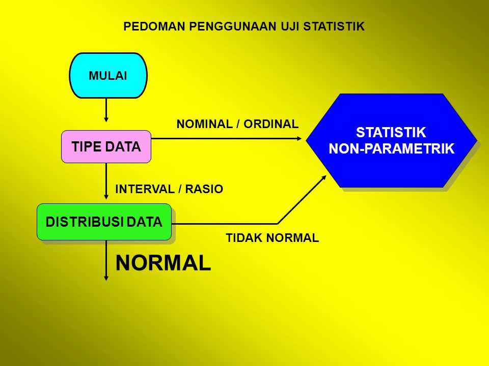 NORMAL STATISTIK NON-PARAMETRIK TIPE DATA DISTRIBUSI DATA