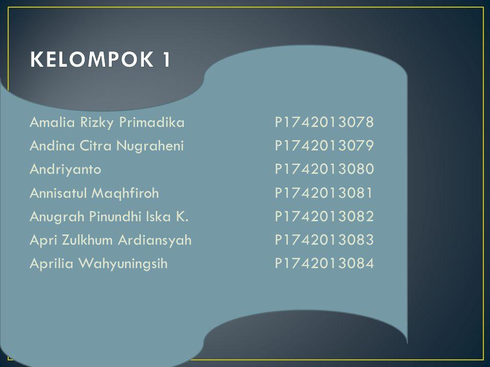 KELOMPOK 1 Amalia Rizky Primadika P1742013078