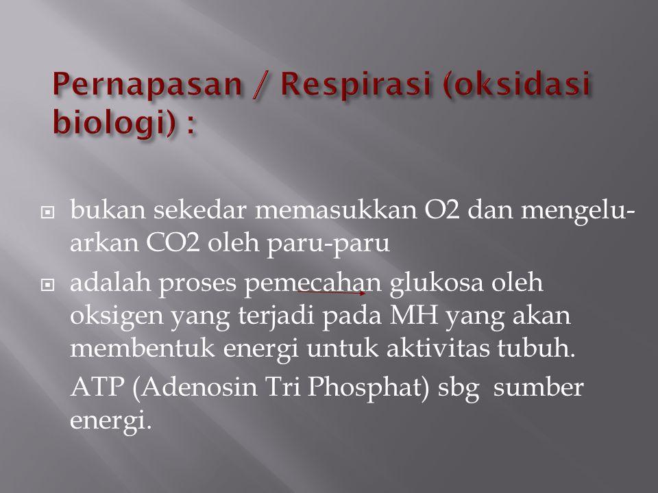 Pernapasan / Respirasi (oksidasi biologi) :