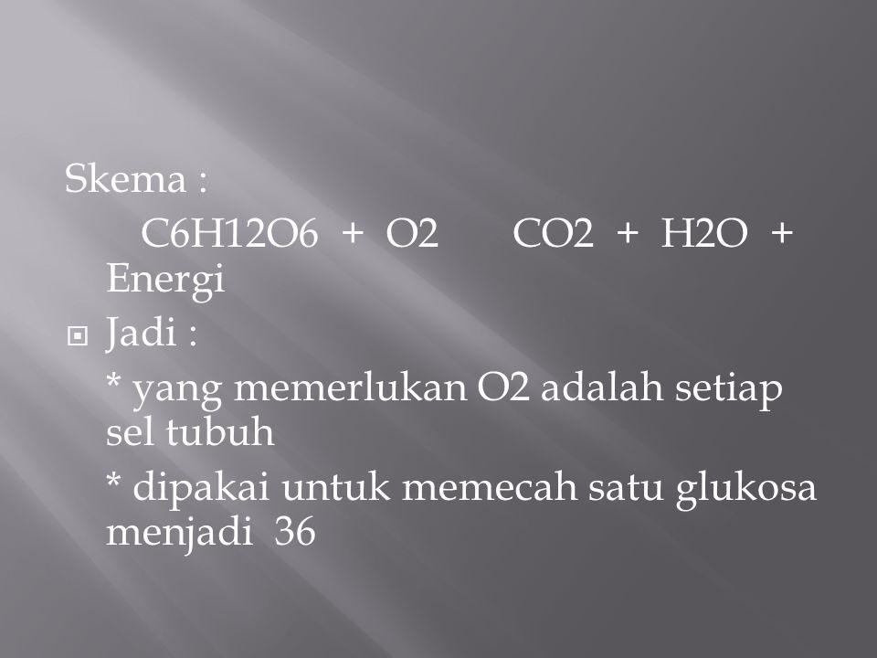 Skema : C6H12O6 + O2 CO2 + H2O + Energi. Jadi : * yang memerlukan O2 adalah setiap sel tubuh.
