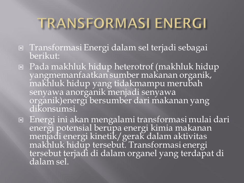 TRANSFORMASI ENERGI Transformasi Energi dalam sel terjadi sebagai berikut: