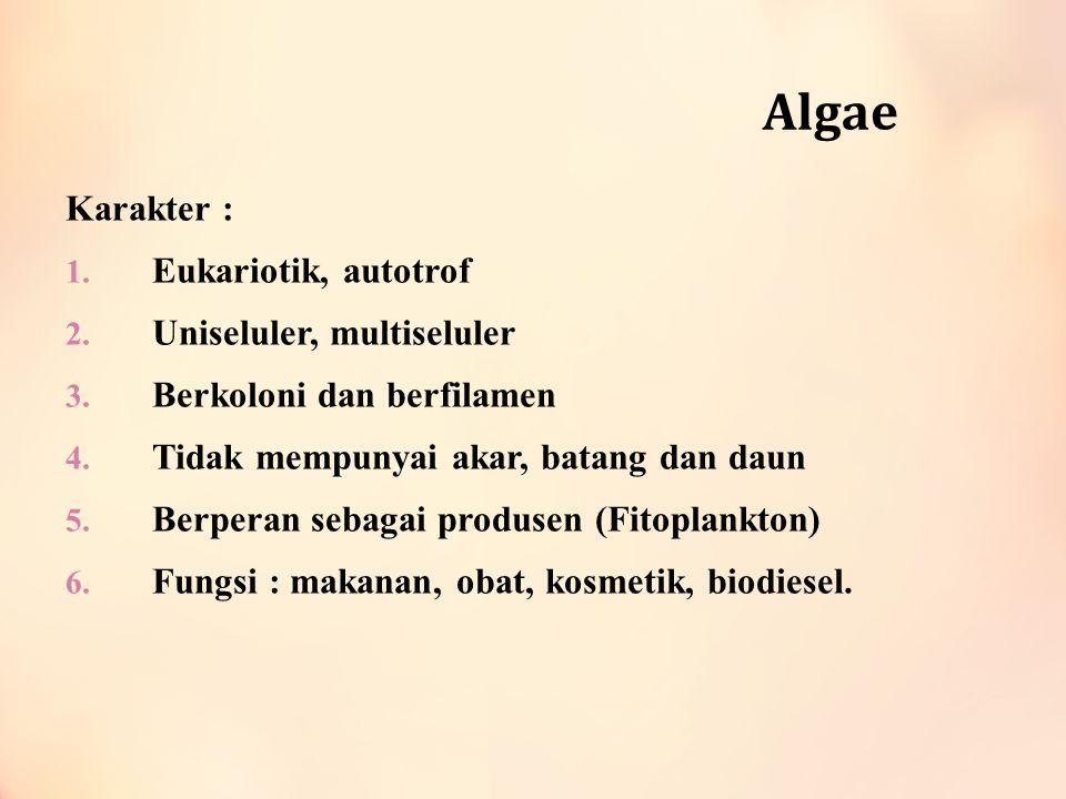 Algae Karakter : Eukariotik, autotrof Uniseluler, multiseluler