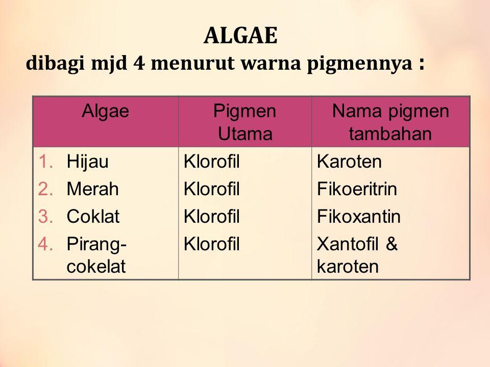 ALGAE dibagi mjd 4 menurut warna pigmennya :