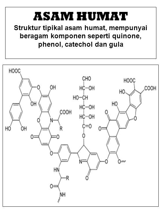 ASAM HUMAT Struktur tipikal asam humat, mempunyai beragam komponen seperti quinone, phenol, catechol dan gula.