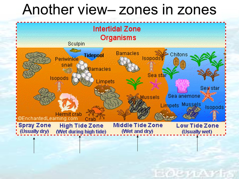Another view– zones in zones