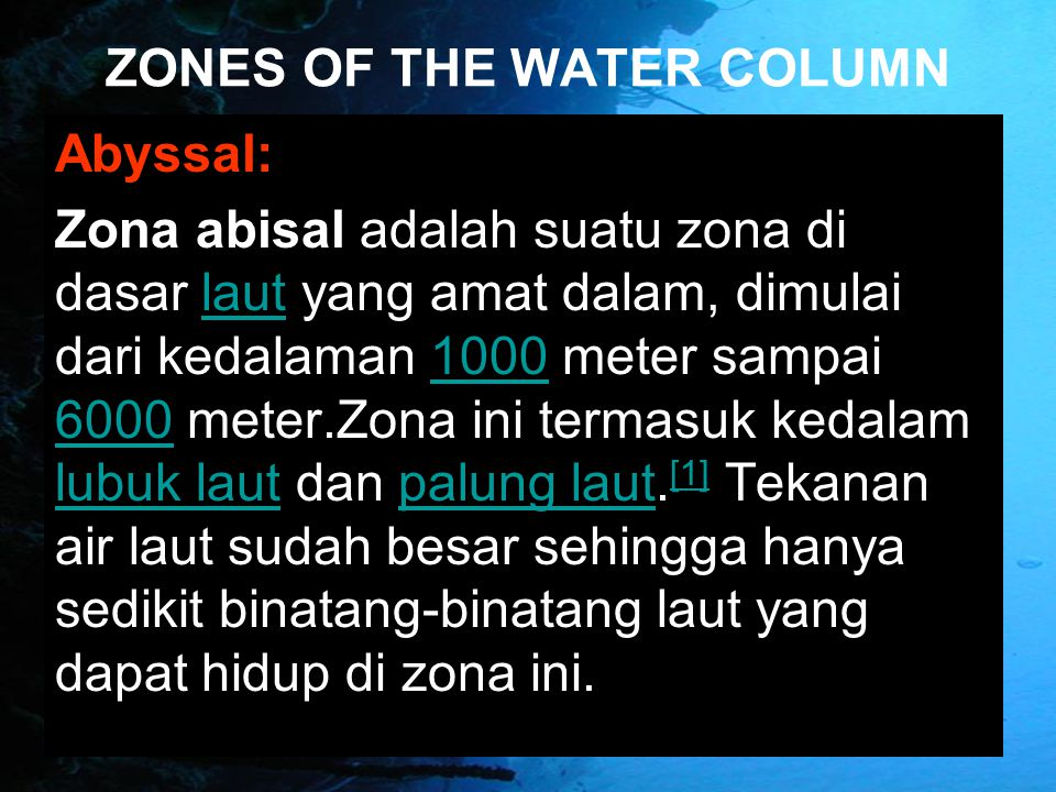 ZONES OF THE WATER COLUMN