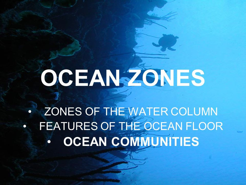 OCEAN ZONES OCEAN COMMUNITIES ZONES OF THE WATER COLUMN