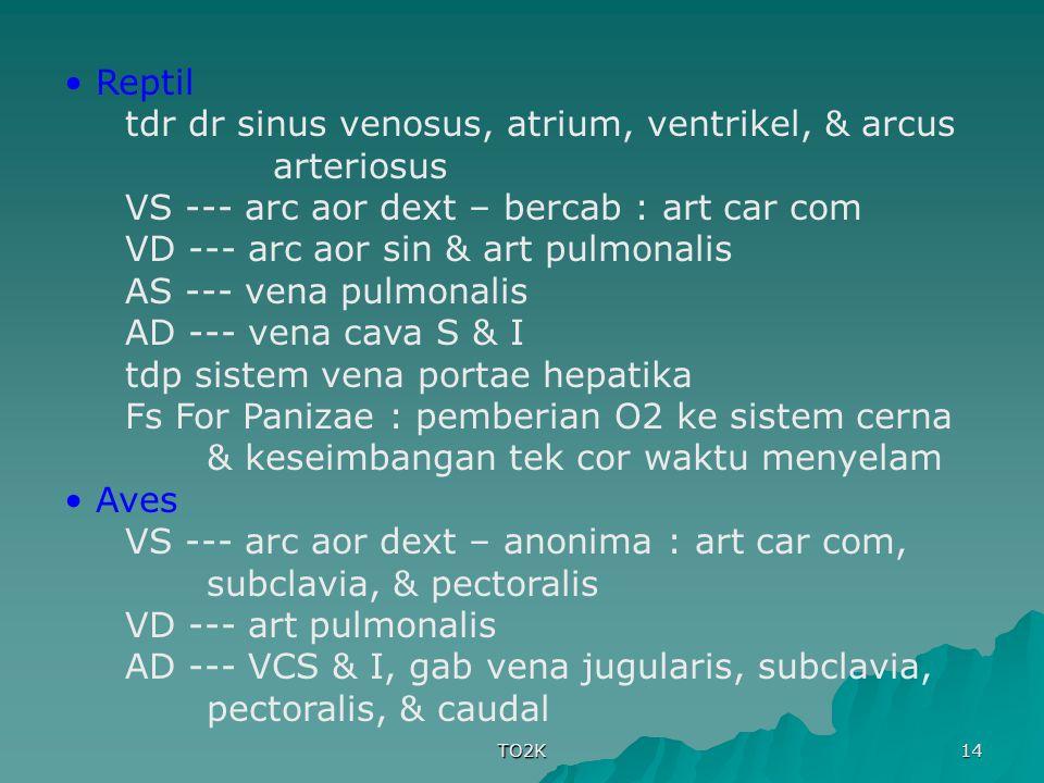 tdr dr sinus venosus, atrium, ventrikel, & arcus arteriosus