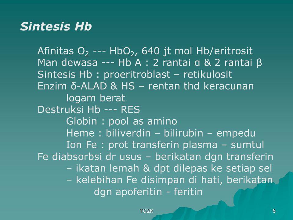 Sintesis Hb Afinitas O2 --- HbO2, 640 jt mol Hb/eritrosit