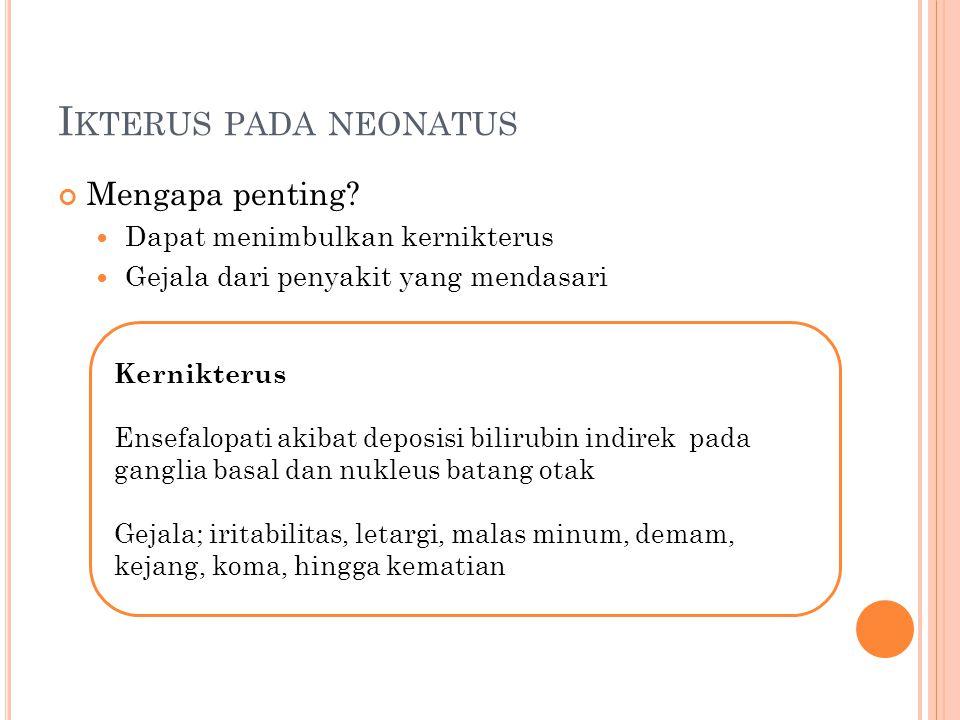 Ikterus pada neonatus Mengapa penting Dapat menimbulkan kernikterus