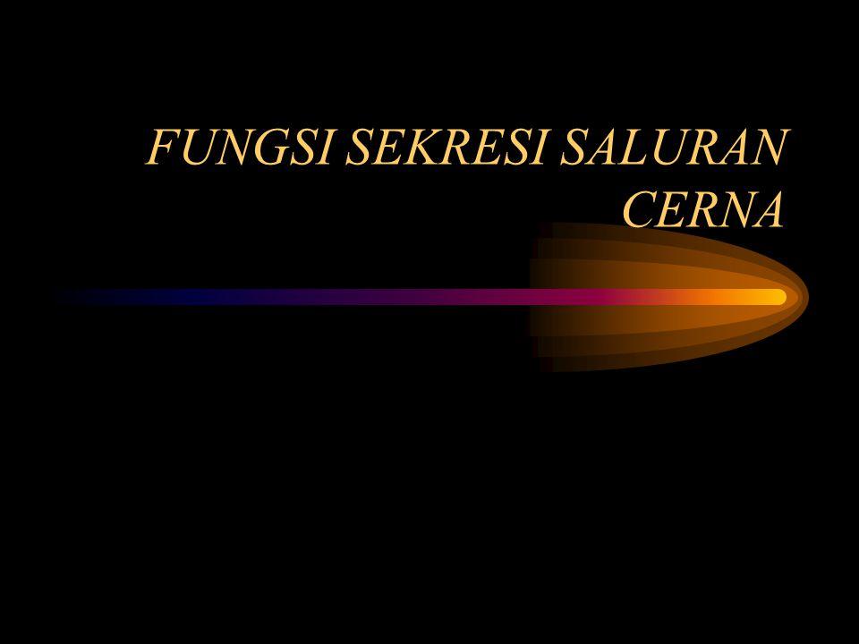 FUNGSI SEKRESI SALURAN CERNA