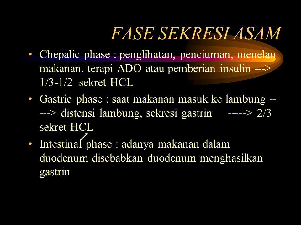 FASE SEKRESI ASAM Chepalic phase : penglihatan, penciuman, menelan makanan, terapi ADO atau pemberian insulin ---> 1/3-1/2 sekret HCL.