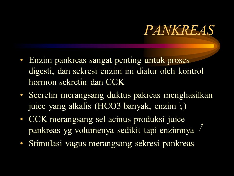 PANKREAS Enzim pankreas sangat penting untuk proses digesti, dan sekresi enzim ini diatur oleh kontrol hormon sekretin dan CCK.