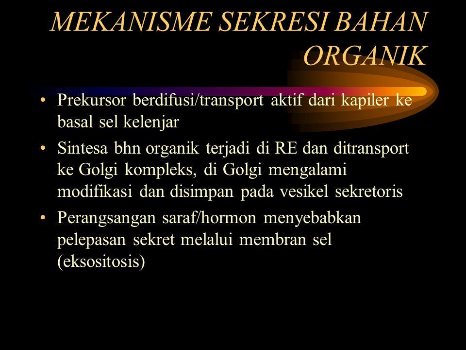 MEKANISME SEKRESI BAHAN ORGANIK