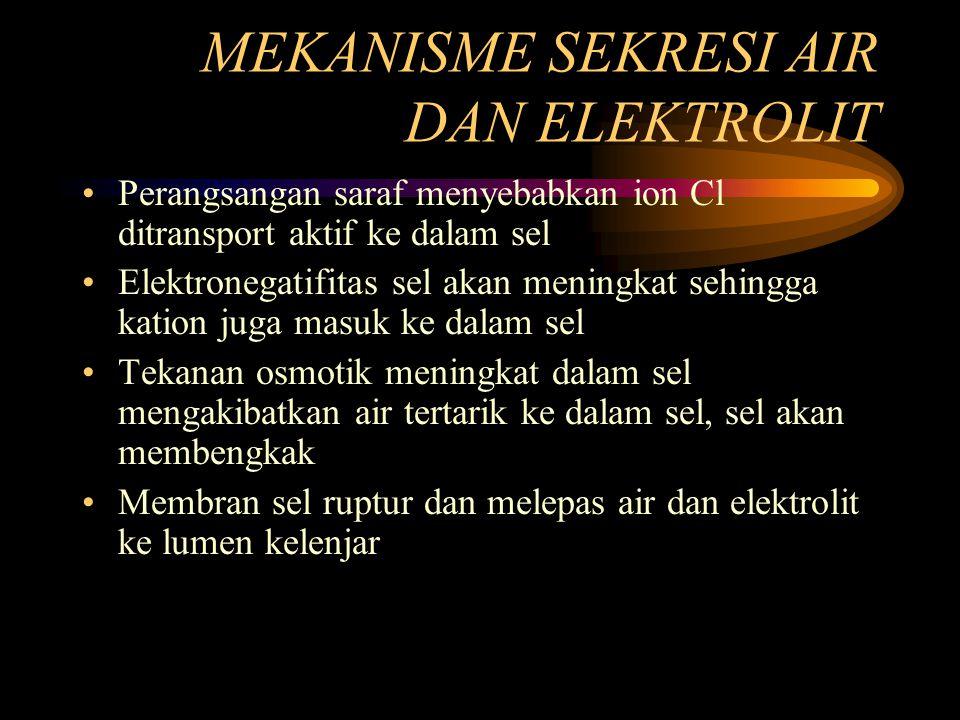 MEKANISME SEKRESI AIR DAN ELEKTROLIT