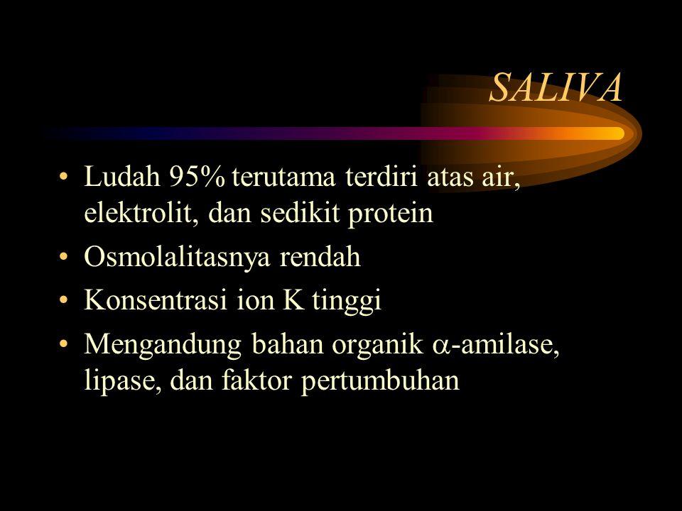 SALIVA Ludah 95% terutama terdiri atas air, elektrolit, dan sedikit protein. Osmolalitasnya rendah.