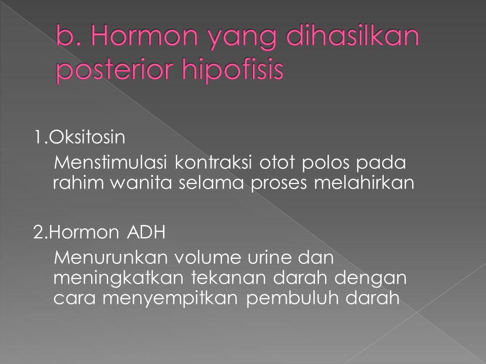 b. Hormon yang dihasilkan posterior hipofisis