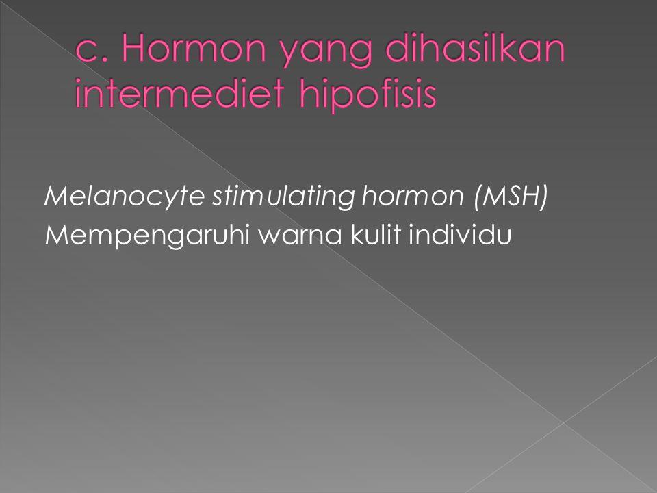 c. Hormon yang dihasilkan intermediet hipofisis
