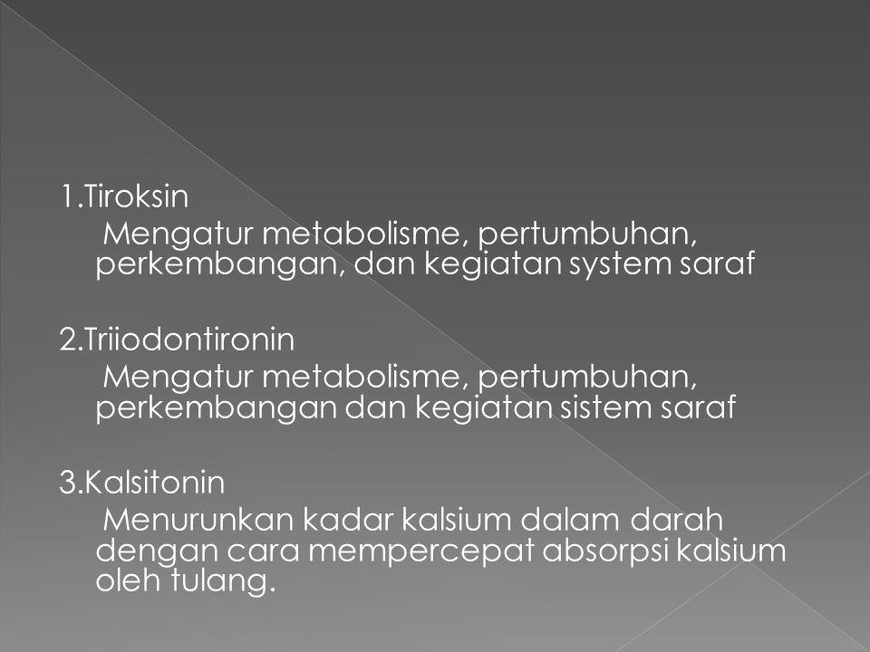 1.Tiroksin Mengatur metabolisme, pertumbuhan, perkembangan, dan kegiatan system saraf. 2.Triiodontironin.