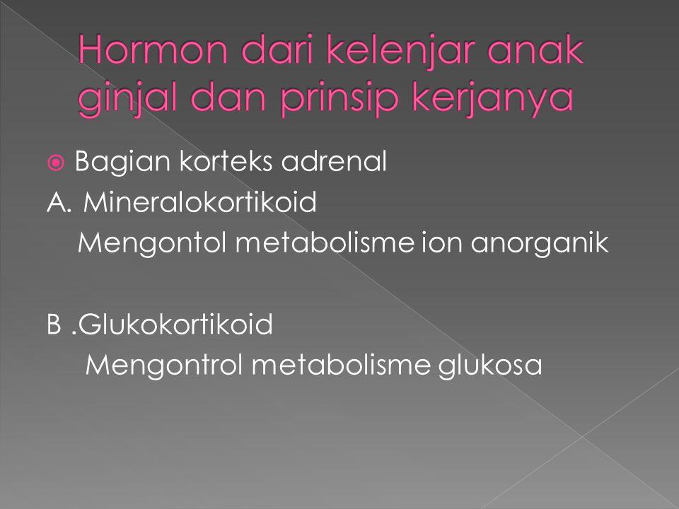 Hormon dari kelenjar anak ginjal dan prinsip kerjanya