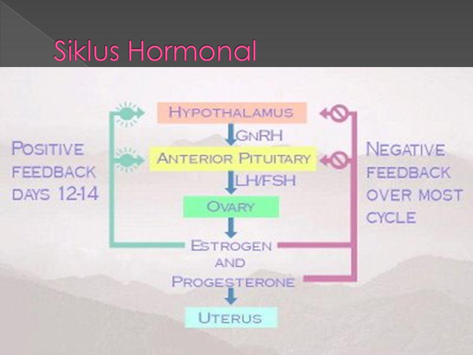 Siklus Hormonal