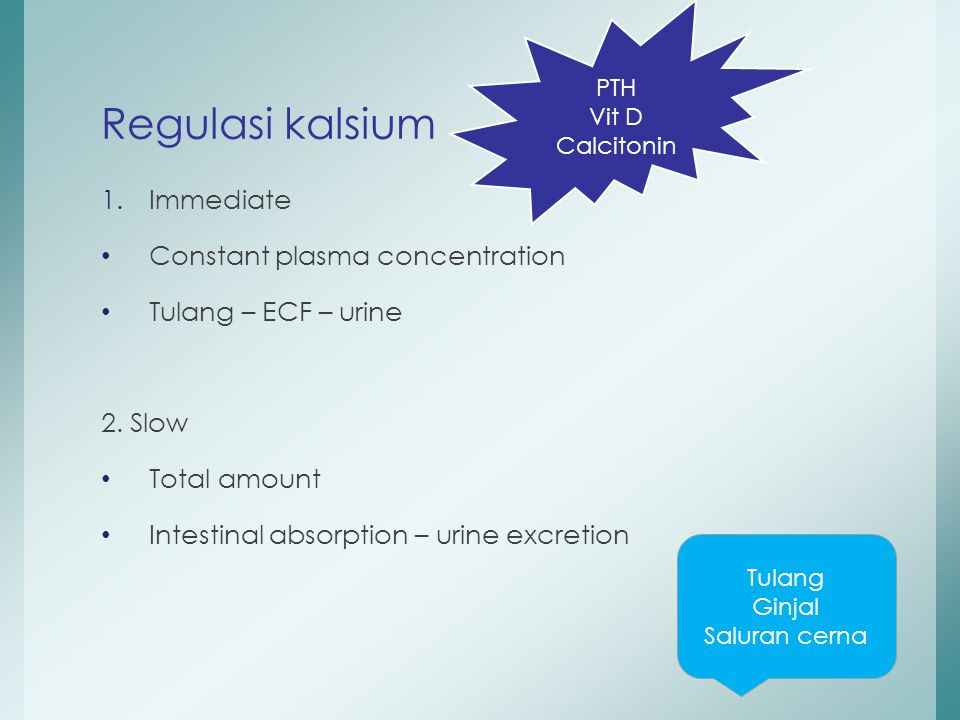 Regulasi kalsium Immediate Constant plasma concentration