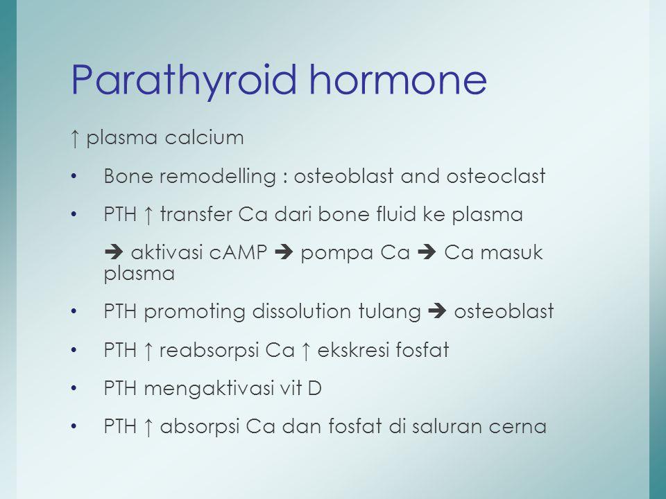 Parathyroid hormone ↑ plasma calcium