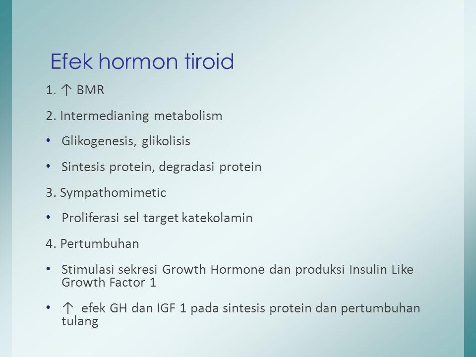 Efek hormon tiroid 1. ↑ BMR 2. Intermedianing metabolism