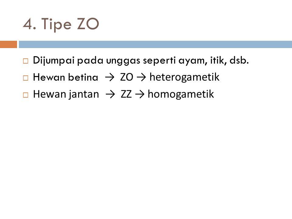 4. Tipe ZO Dijumpai pada unggas seperti ayam, itik, dsb.